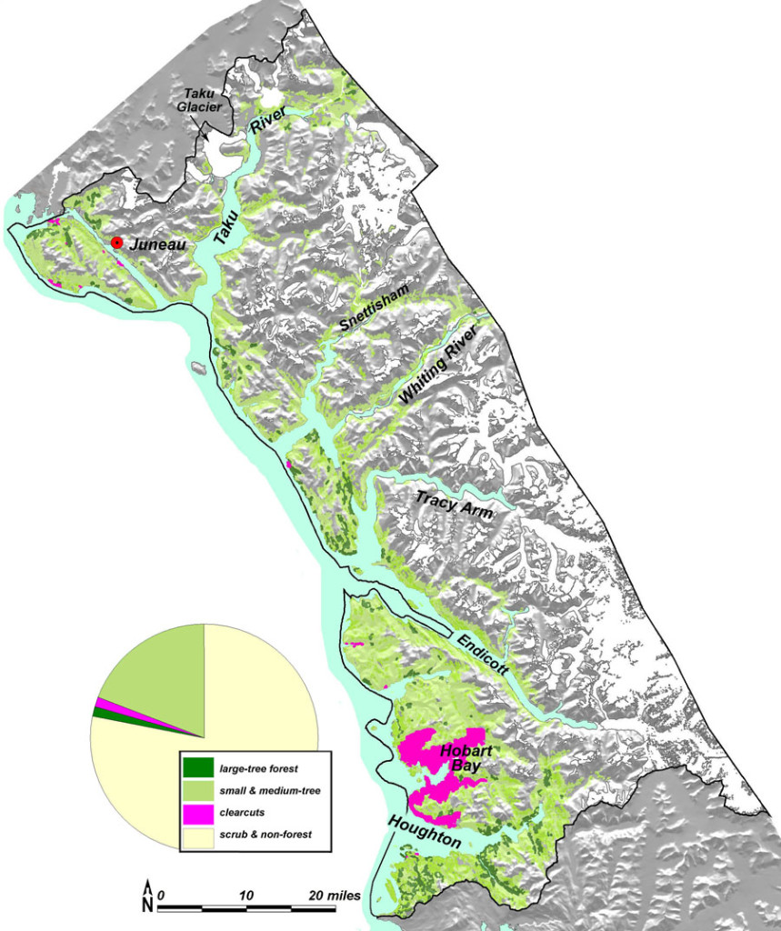The only substantial extent of large-tree forest (dark green) in Taku Province was in Hobart Bay, logged by Goldbelt Corporation.