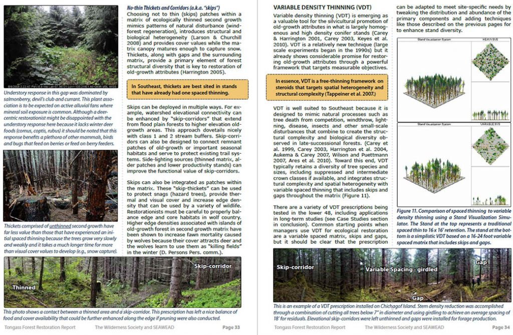 Forest restoration in the Tongass: Why, how, and where | JuneauNature